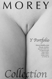 MoreyStudio.com